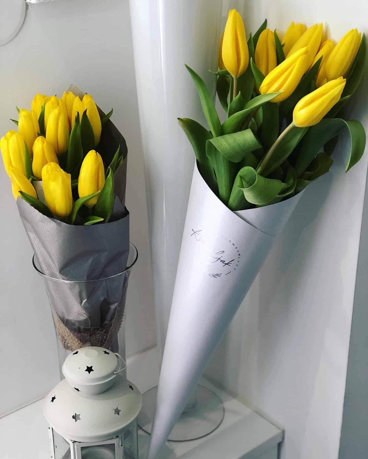 Buket žutih lala u belom fišeku