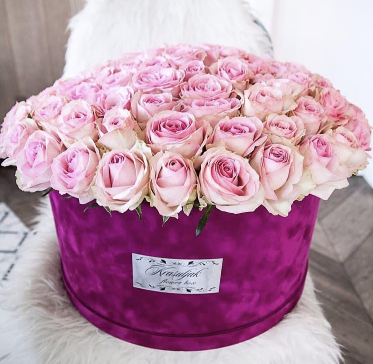 Cvece - Plisana ljubicasta kutija sa nezno rozim ruzama