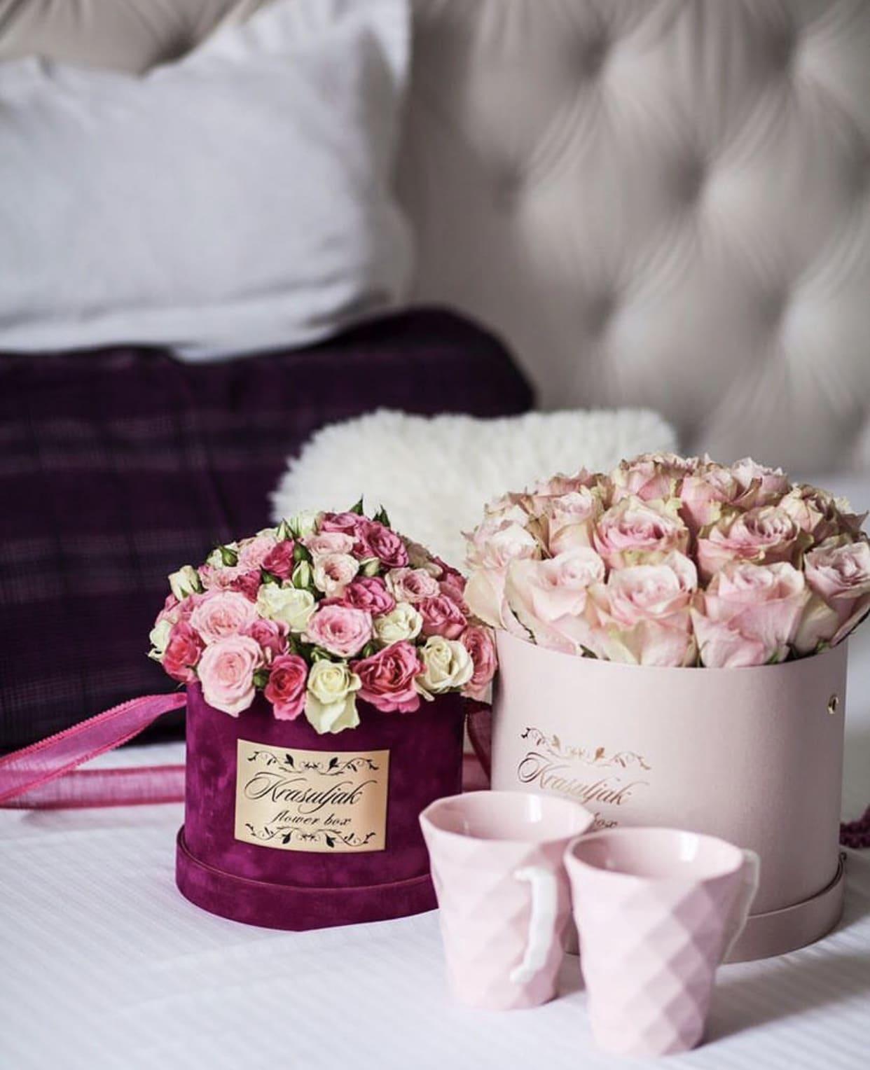 Roza kutija sa ruzama nezno roze boje i ciklama plis kutija sa sarenim ruzama bele, roze i ciklama boje